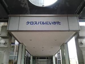 20131103_145052.jpg