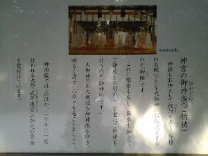 20131108_124241.jpg