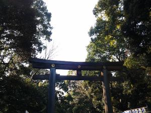 20140103_134049_1.jpg